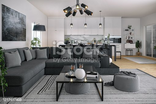 Picture of modern living and kitchen area. Render image.