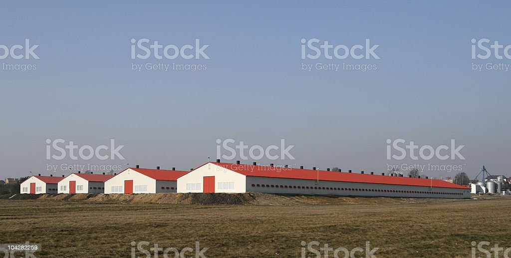 Modern poultry farms stock photo