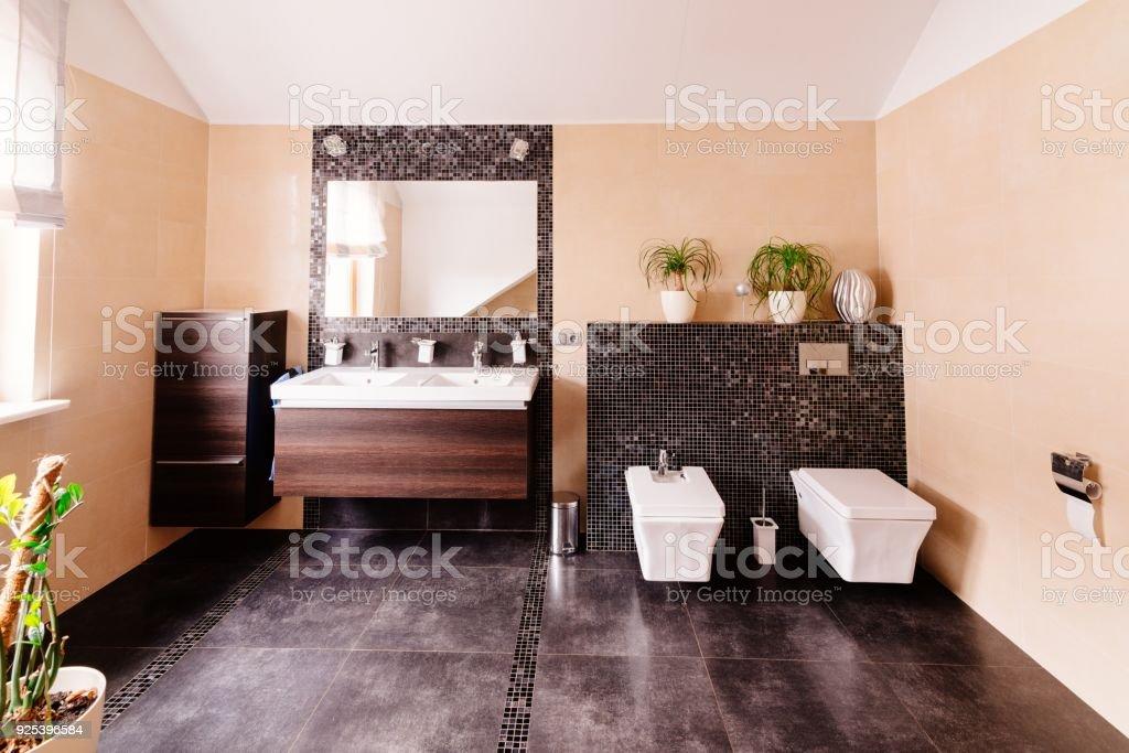 Photo libre de droit de Toilettes Modernes Avec Lavabo banque d ...