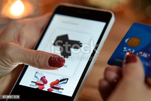 istock Modern shopping in the e-store 623667328