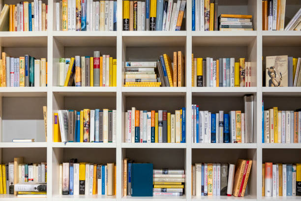 Modern simple shelf wall in the library stock photo