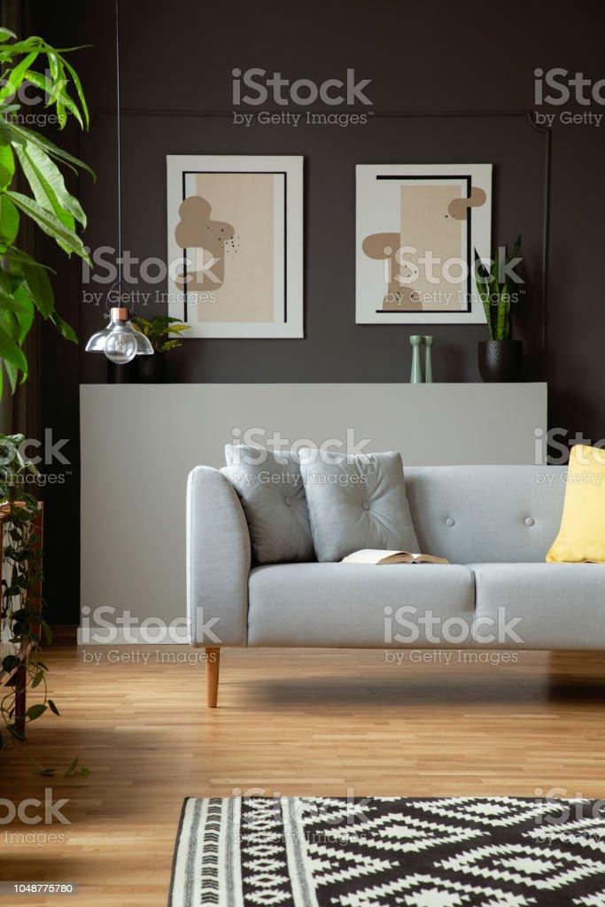 Modernes Sofa Mit Kissen Und Zwei Malen Auf Eine Graue Wand ...