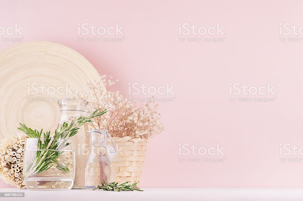 Modern Soft Light Pink Pastel Home Interior With Green Plant Dried