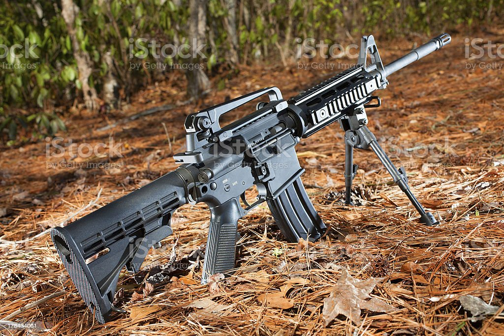 Modern sporting rifle stock photo