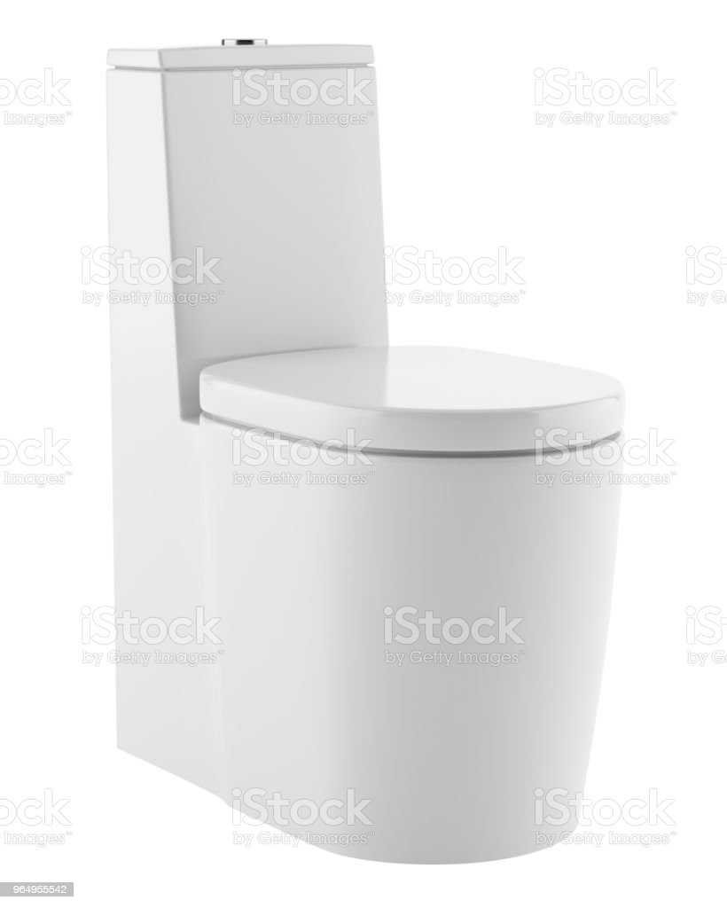 Incredible Modern Standing Toilet Bowl Isolated On White Background Creativecarmelina Interior Chair Design Creativecarmelinacom