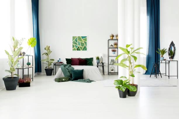 moderne studio-wohnung - lila, grün, schlafzimmer stock-fotos und bilder