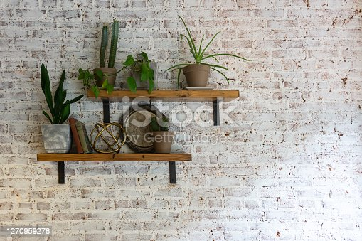 Modern stylish white brick wall with shelves and plants on them.