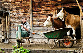 Social engineering. A modern and young Swiss farmer is observed by his cattle while using a digital tablet device. Shot during Lenklypse photo event in Switzerland.