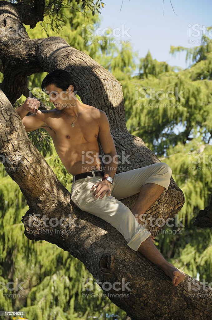 Modern Tarzan royalty-free stock photo