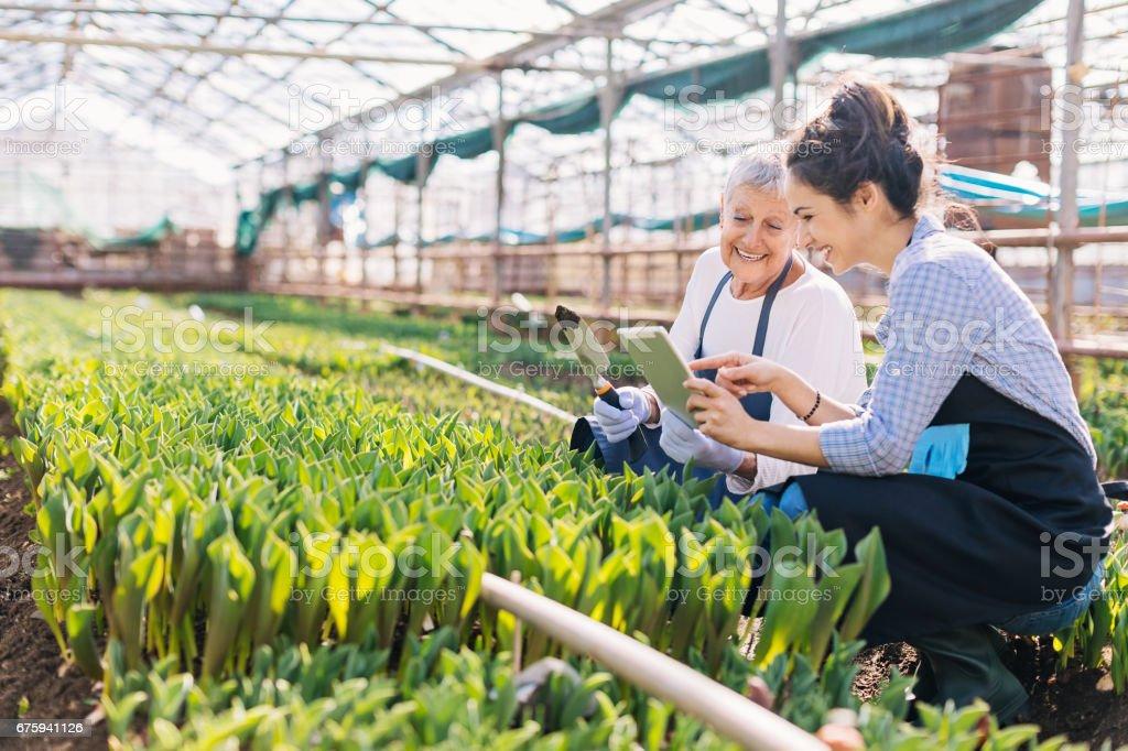 Modern technology and gardening stock photo