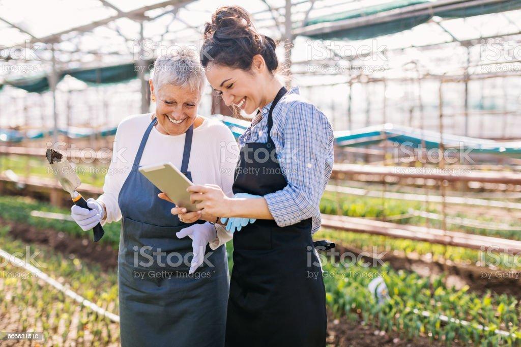 Modern technology and undustrual gardening stock photo