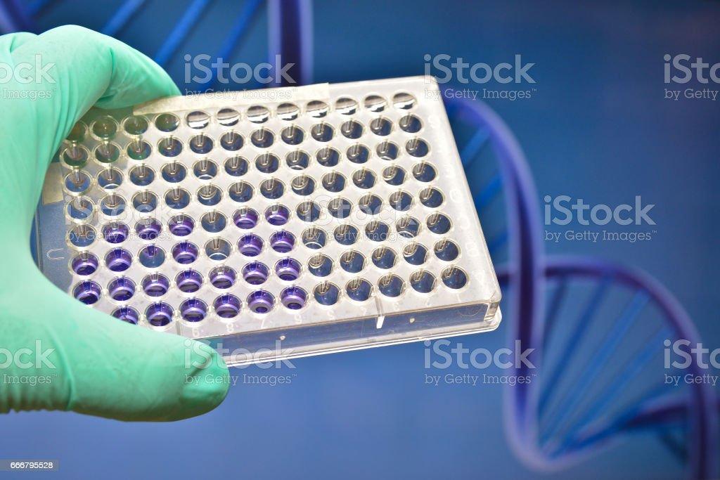 Modern technology in a scientific laboratory. stock photo