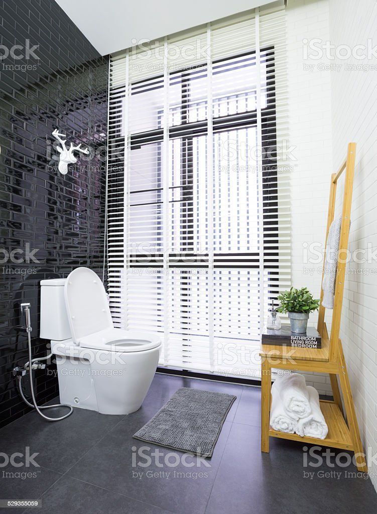 Modern toilet stock photo