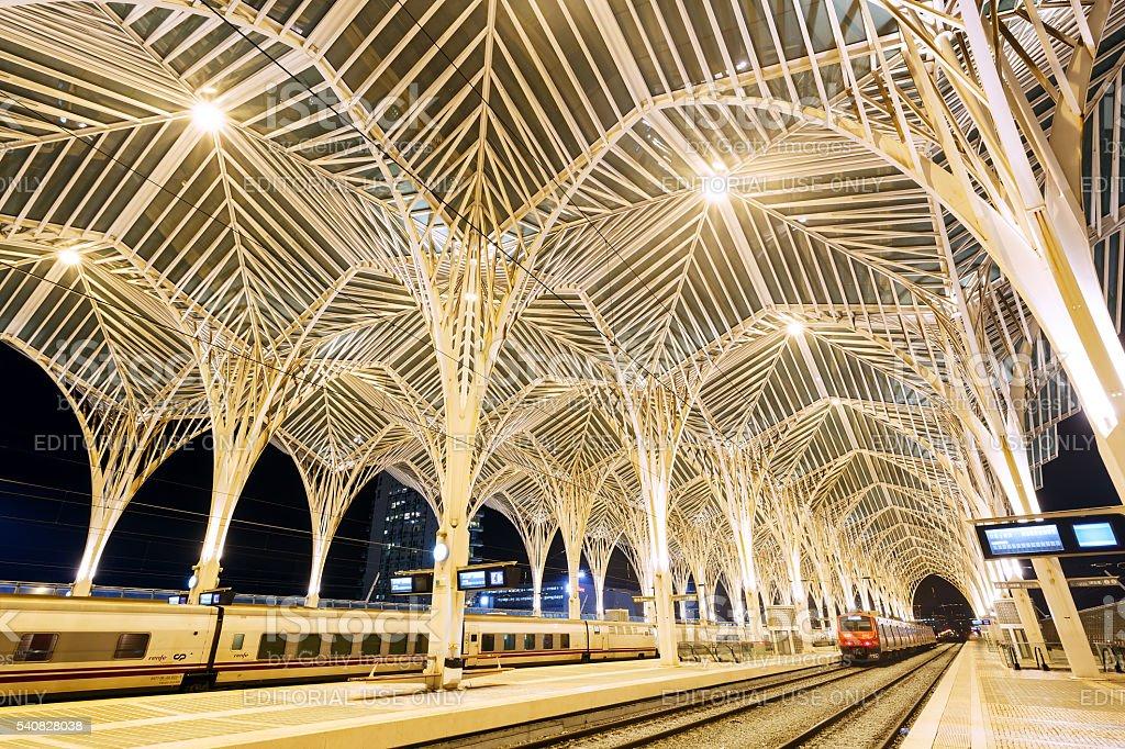 Modern trains Oriente Station stock photo