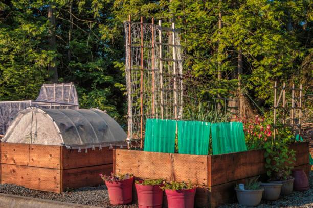 moderne urban gardening erhöhte betten und anlage display-schutzfolien - tipi bett stock-fotos und bilder