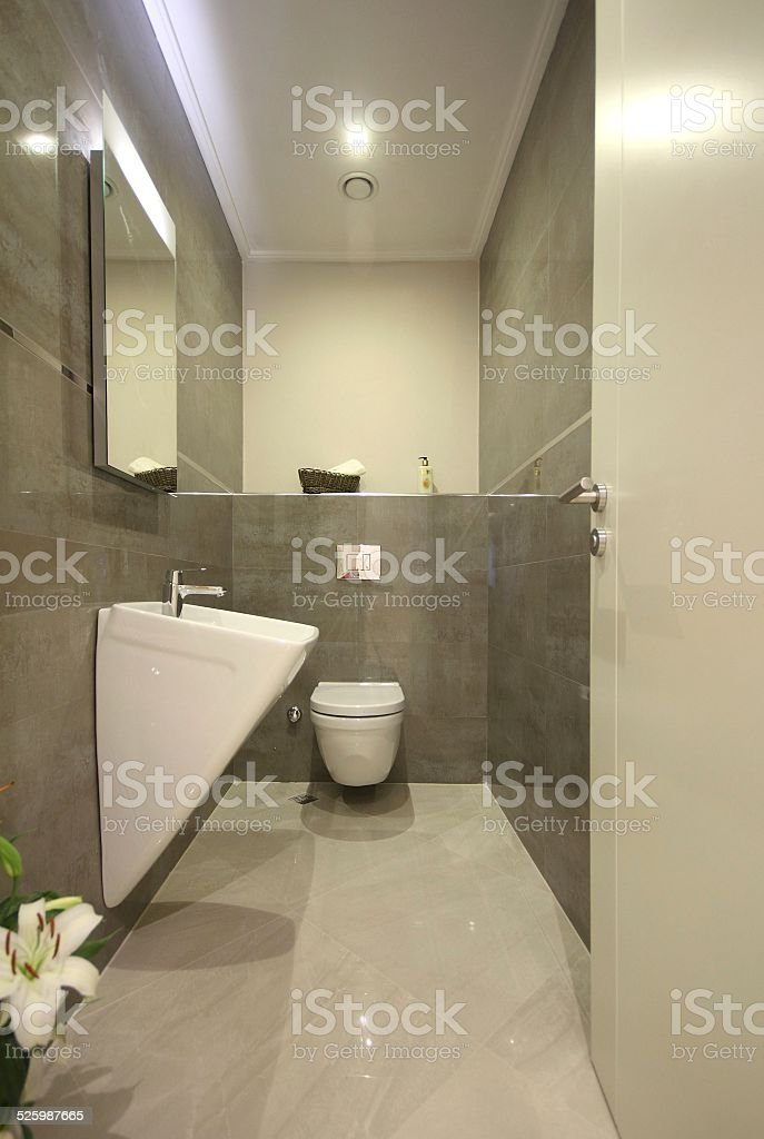 Modern Wc Design Stock Photo & More Pictures of Architecture | iStock