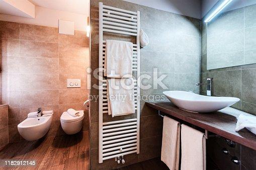 800987054istockphoto Modern white Bathroom design and luxury interior in Italy 1182912145