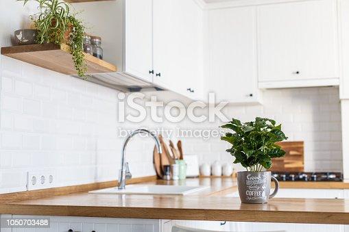 istock Modern white kitchen scandinavian style 1050703488