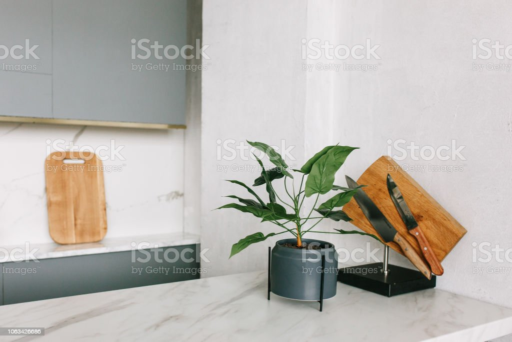 Modern White Marble Kitchen In New Moved Studio Flat Decorative Green Plant And Knife Rack Stock Photo Download Image Now Istock