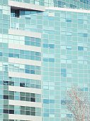 windows,window frame,office buildings,Architectural Detail