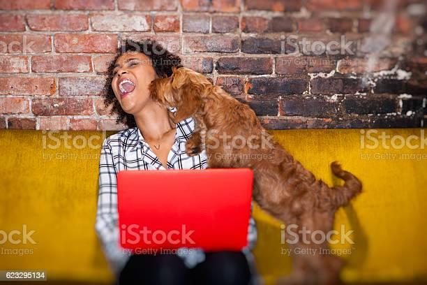 Modern woman working from home picture id623295134?b=1&k=6&m=623295134&s=612x612&h=ixkayoe1yosb5bm2hwnfyylk0jdbnwiuziqz1o9ocb8=