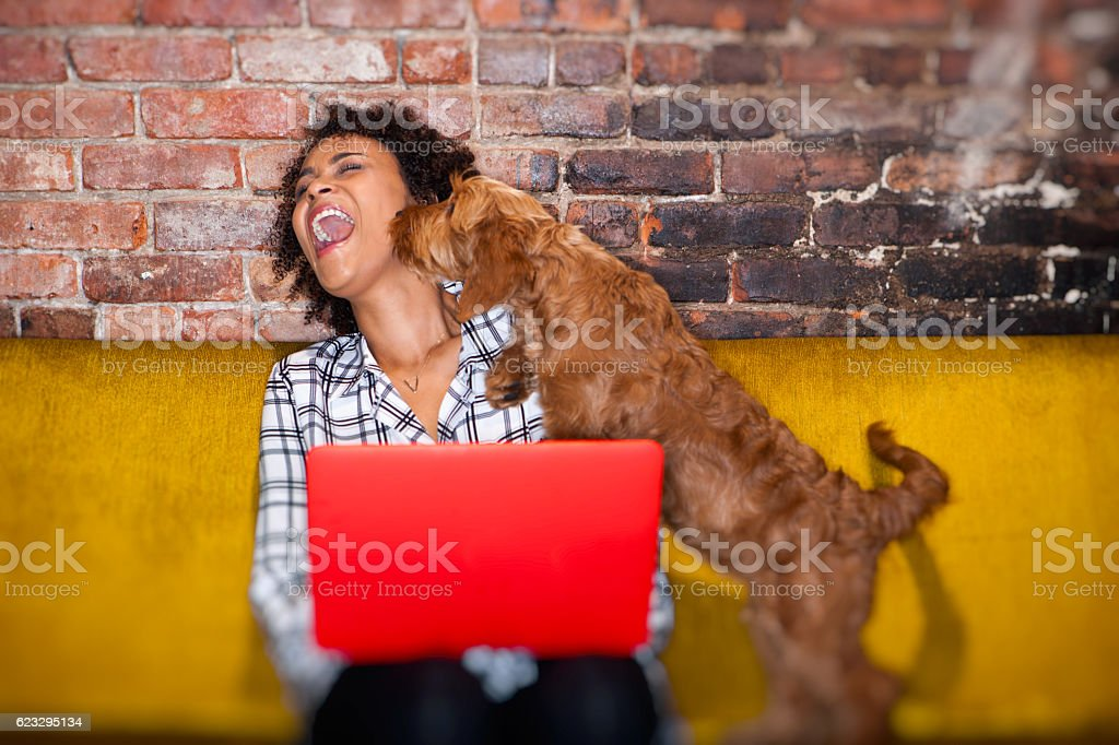 modern woman working from home stock photo