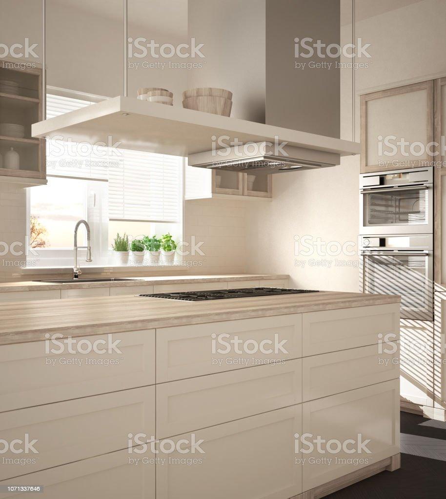 Moderne Holz Und Weiße Küche Mit Insel Gasherd Und Spüle ...