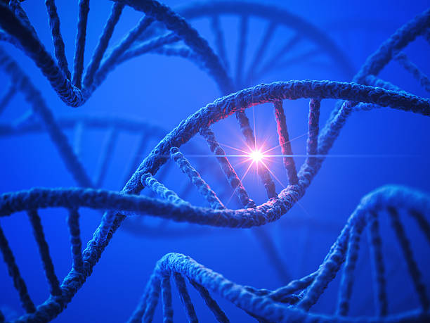 DNA Modification Genetics background. 3D render. helix model stock pictures, royalty-free photos & images
