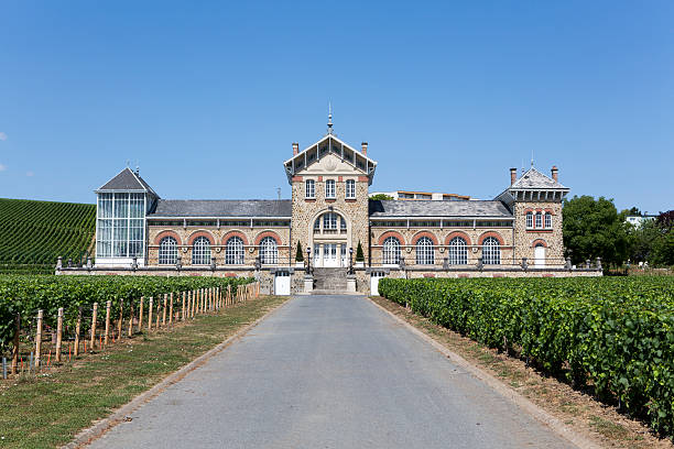 Moet & Chandon Vineyards, France Champagne House Epernay, France - July 16, 2015: Moet & Chandon vineyards is one of the world's largest champagne houses.  Its vineyards are located throughout the Champagne region.  The Champagne growing region is famous for its quality and prestigious brands. moët & chandon stock pictures, royalty-free photos & images