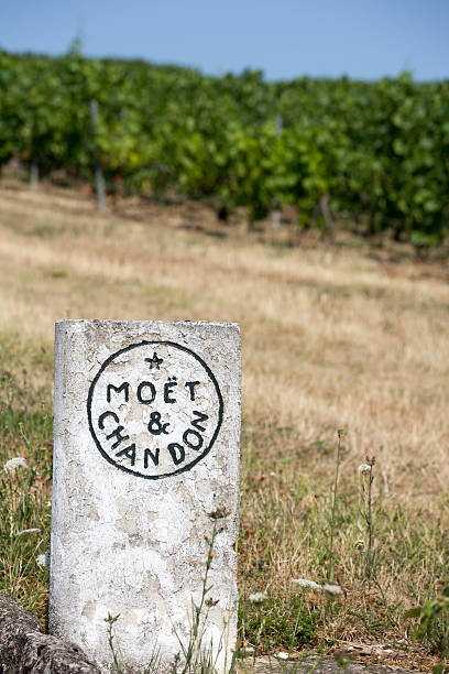 Moet & Chandon Vineyards, France Champagne House Epernay, France - July 16, 2015:  A cement placard marks Moet & Chandon vineyards, located outside of the city of Epernay.  The Champagne growing region is famous for its quality and prestigious brands. moët & chandon stock pictures, royalty-free photos & images