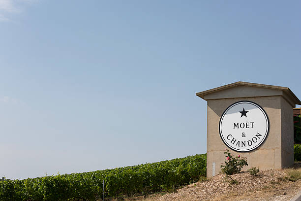 Moet & Chandon Vineyards, France Champagne House Epernay, France - July 16, 2015: Moet & Chandon vineyards, located outside of the city, is one of the world's largest champagne houses.  Its vineyards are located throughout the Champagne region.  The Champagne growing region is famous for its quality and prestigious brands. moët & chandon stock pictures, royalty-free photos & images