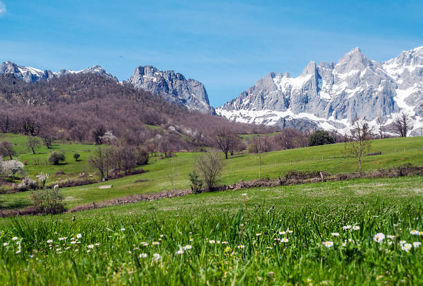 Mogrovejo mountains Mogrovejo mountains in the north of Spain cantabria stock pictures, royalty-free photos & images