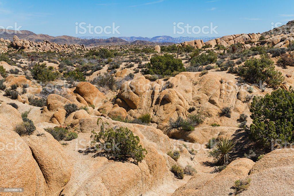 Mojave Desert, California stock photo