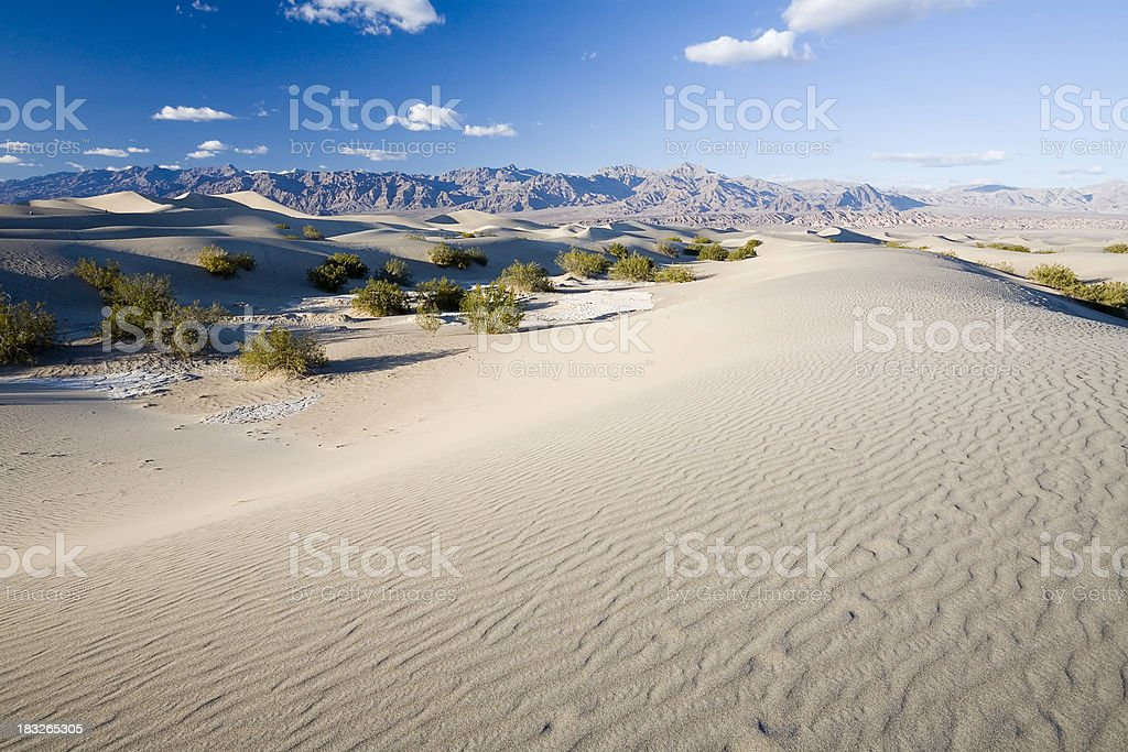 Mojave Desert Landscape royalty-free stock photo