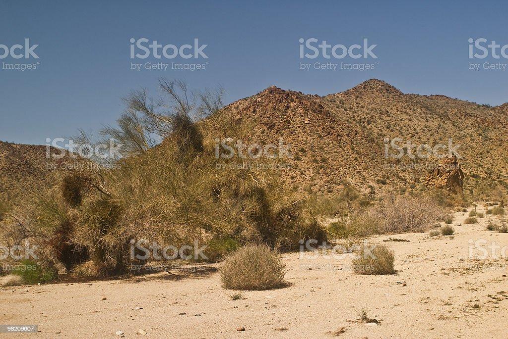 Vista Deserto Mojave foto stock royalty-free