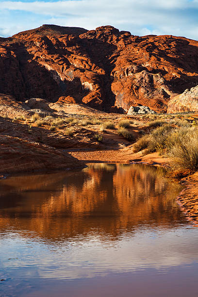 Mojave Desert Water in Valley Of Fire stock photo