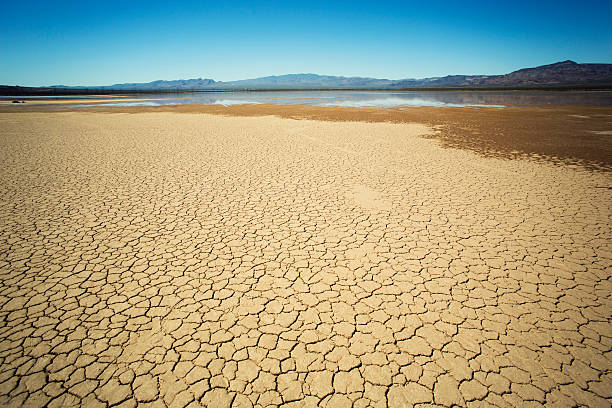 Mojave Desert with rare rainfall Mojave Desert with rare rainfall. lake bed stock pictures, royalty-free photos & images
