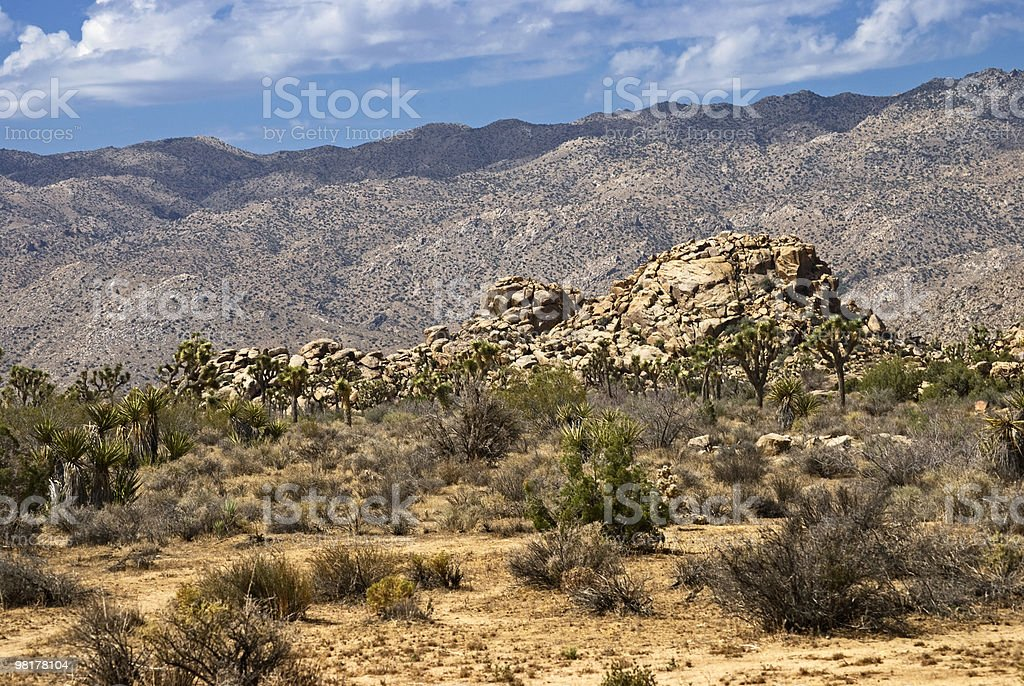 Mojave Landscape royalty-free stock photo