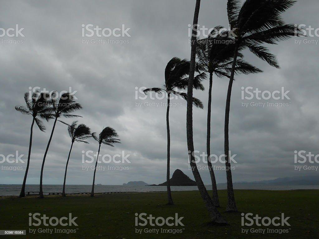 Mokolii (Chinaman's Hat) in Kaneohe Bay in Oahu, Hawaii. stock photo