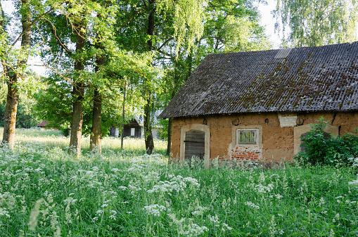 molar old ural barn between the high grass