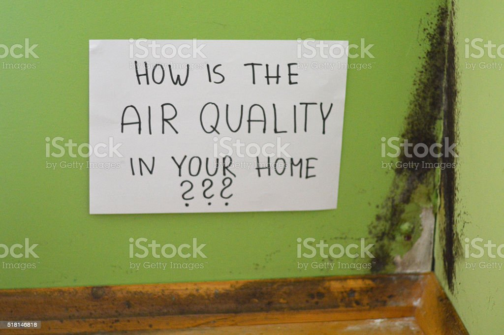 Mold and dust. - Royalty-free Air Pollution Stock Photo
