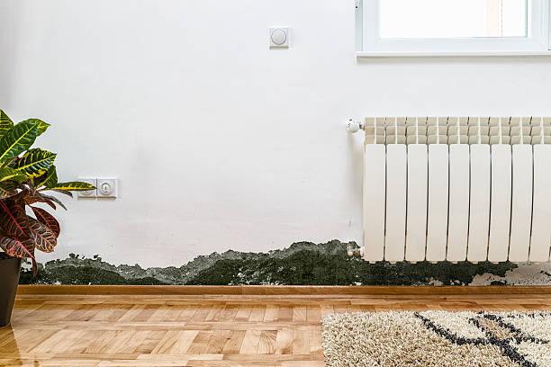 schimmel und feuchtigkeit anstauen an der wand eines modernen hauses - farbe gegen schimmel stock-fotos und bilder