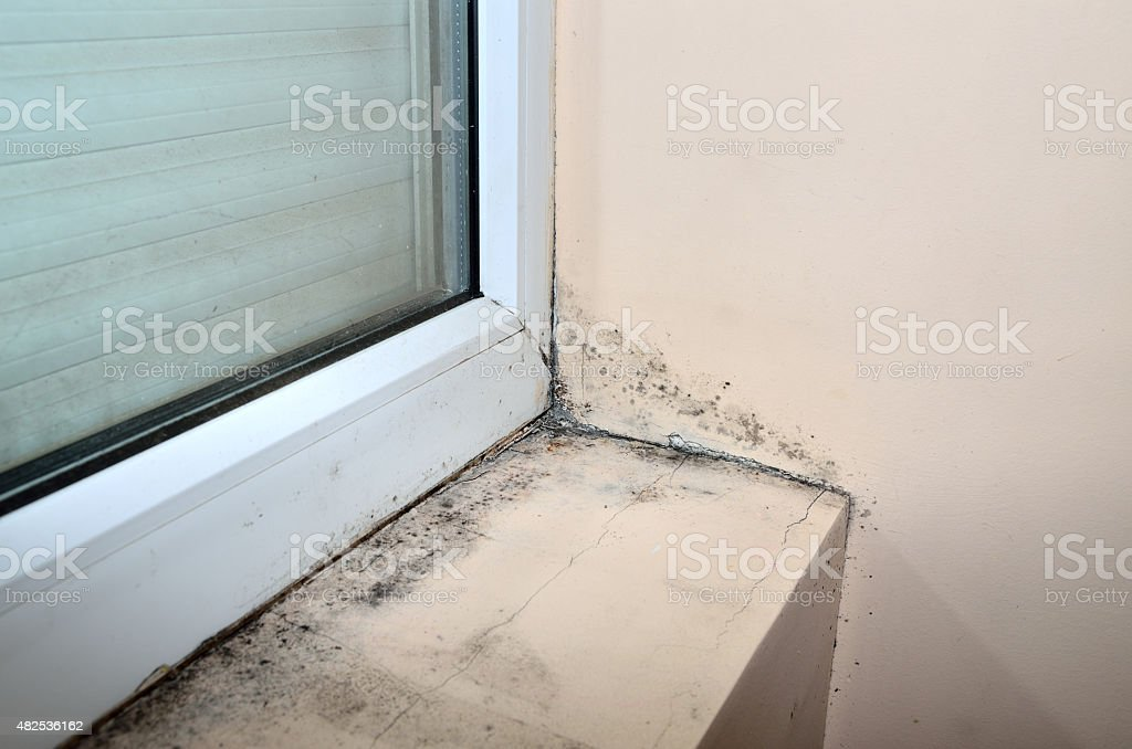 Mold below window stock photo