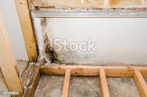 Black mold grows in the basement. The mold was revealed after a poorly installed bathtub and shower surround were removed.