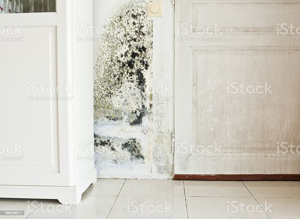 Mold Growth on Wall and Damp Stained Wood Door stock photo