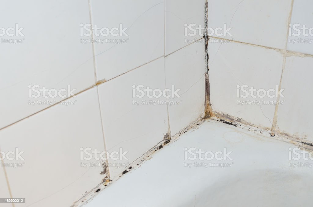 Mold in bathroom stock photo
