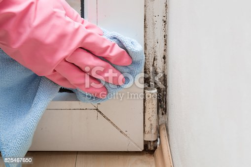 istock Mold in the window corner. Hand in rubber protective glove with microfiber cloth trying remove it. 825467650