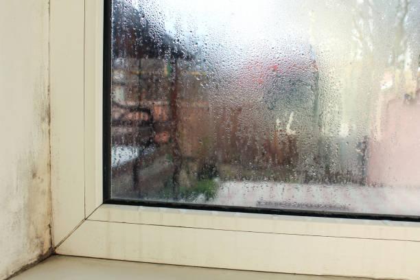 schimmel in de buurt van een raam in huis. condensatie op het raam. - luchtvochtigheid stockfoto's en -beelden