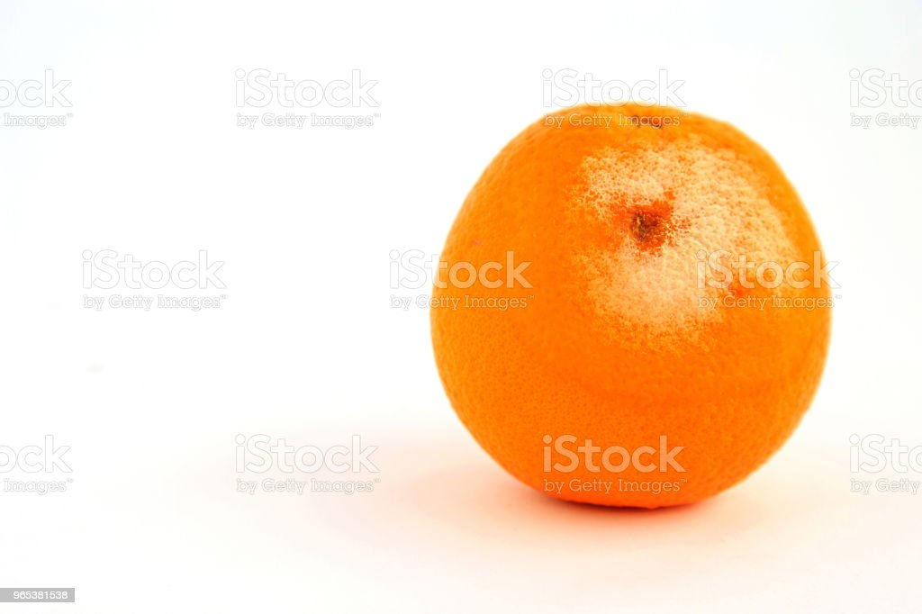 A mold on orange skin with white background. zbiór zdjęć royalty-free