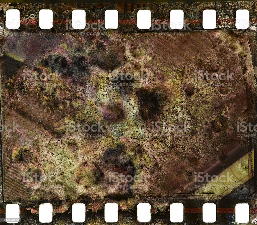 Mold or fungus on film royalty-free stock photo